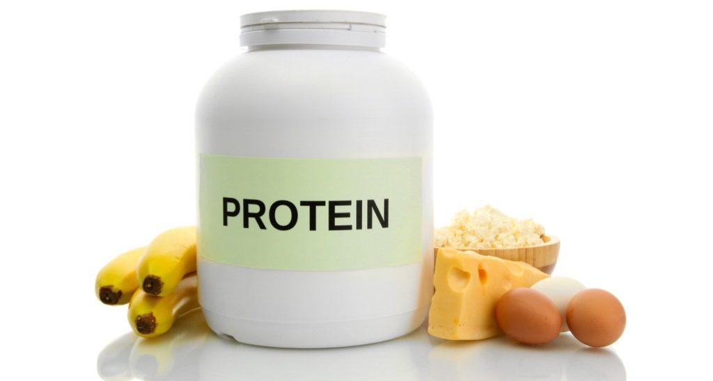 protein sangat dibutuhkan dalam pembuatan makanan ikan
