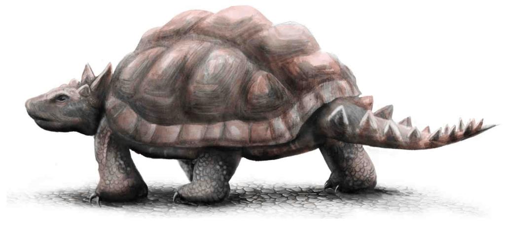 gambaran meiolania sebagai salah satu kura kura terbesar