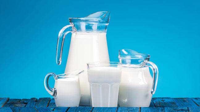 manfaat susu kuda liar