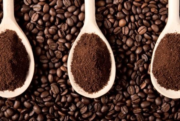 harga kopi lampung hemat di kantong